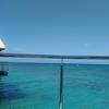 【ニューカレドニア旅行記:4日目】さよならメトル。アンスバタビーチへ。