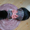 今日の黒猫モモ&白黒猫ナナの動画ー812