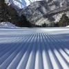 今日の白馬岩岳スノーフィールド、THE DAYでした❤︎【ゲレンデレポート】