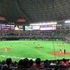 昨日野球観戦