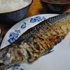 木更津 市場食堂 サバ文化焼き定食の日