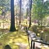 湖東三山の西明寺! 滋賀県甲良町(48/1741)