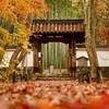 「京都の四季フォトコンテスト」で優秀賞をいただきました