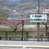 峡東・峡北の桃の花