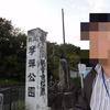 さくら-71-琴弾公園  新歴史公園-34-琴弾公園 2010.11.23(祝)