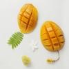 韓国では今年の夏もマンゴーかき氷バブルの勢いが止まらない!