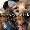 【9月16日版】一週間の Withdog & Withcat  まとめ読み【特集:子猫を拾ったらどうする?】[2018.9.16]