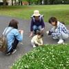 4月24日 辰巳の森緑道公園