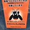 高知県佐川町に住むフルーツトマト農家の友人を訪ねてみたVol.1