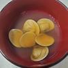 【春が旬】ひな祭りにも最適!はまぐりの潮汁が最高に旨い!