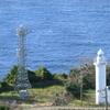 越前海岸の水仙ランドから灯台と日本海の景色を撮影!カラーコントラストが素敵すぎた!