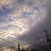 RICOH GRⅢ 日常の写真