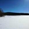1人氷の上を散歩。
