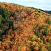 奥美濃・桧峠の紅葉と長良川鉄道