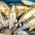 【リアル過ぎるメタルジグ7選】爆釣!?スーパーライトから本格的ショアジギにおすすめ!
