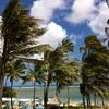 ハワイにこれから行くあなたに!自慢できちゃう先取りお店情報。