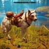 【シタデル】テイムのやり方と序盤おすすめの動物