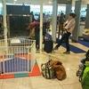 乳幼児連れ海外旅行で良かったこと(子連れ専用手荷物検査ゲート)