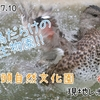 【レポ#26】都会の癒しスポット!井の頭自然文化園現地レポート(2021/7/10)【後編】