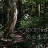 【RX100Ⅶ】ソニーのコンデジRX100m7がある生活!ポケットに入る無限大の可能性!
