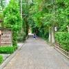 【人力車】嵐山周辺【竹林】