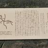 万葉歌碑を訪ねて(その487)―奈良市神功4丁目 万葉の小径(23)―万葉集 巻八 一四六一