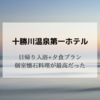 【十勝川温泉】十勝川温泉第一ホテル「日帰り入浴+ディナープラン」