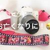 【カメラレンタル】相棒カメラがお亡くなりに!rentio利用してみた!