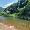 夏は津保川で泳ぐしかない❢❢