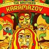 こりゃダメだ ◆ 「30分でわかるシリーズDVD ドストエフスキー カラマーゾフの兄弟」