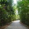 シンガポールの離島でサイクリングを楽しもう