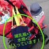 年子育児のお助けアイテム 二人乗りベビーカー キンダーワゴン「DUOシティHOP」レビュー!