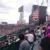 高校野球観戦記3