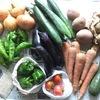 キラキラ野菜届きました