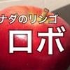 カナダのリンゴは丸かじりに最適【Lobo (ロボ)とレッドデリシャス】