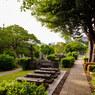 村上春樹を巡る青山、千駄ヶ谷散歩