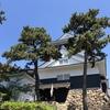 愛知観光 子連れ・日帰りで楽しめて歴史も学べる!岡崎城はコスパが凄い!