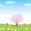 特別企画 ひき桜花見大会~ひきこもり、桜でお花見、ひき桜~のご案内
