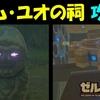 【ゼルダの伝説BotW】 カム・ユオの祠 攻略 【ゼルダの伝説ブレスオブザワイルド】
