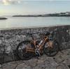 沖縄のでんすけ発見