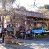 日本 谷汲山華厳寺参道 冬の風景