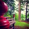 【神仏】雨の日に巡りたい南会津の神社仏閣。日本遺産『御蔵入三十三観音』田島地区