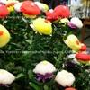 菊の力で延命長寿 重陽の節句 菊酒・菊の被綿