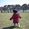 子供と遊ぶのが苦手なお父さんこそ公園に近くに住みませんか?(推薦したい5つの理由)