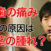 【体験談】奥歯の痛みは歯茎の腫れが原因?実際に歯医者さんに言われたアドバイスと治す方法の話