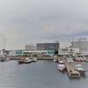 夏休みの家族旅行に「名古屋港水族館」がオススメ。
