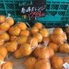 「春峰(しゅんぽう)」という柑橘がむちゃくちゃ美味しい件!!私設エイド、水都大阪ウルトラマラニックで出しますよ〜!!