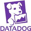 ECS EC2 上で起動する Datadog Agent コンテナが unhealthy になる時の処方箋