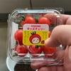 ベランダ農園 プチトマトさんの状況 Part.1