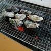 九十九島を楽しむ:遊覧ツアーと牡蠣小屋